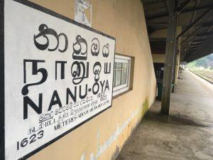 Nanu Oya Train Station